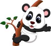 Cute baby panda carton Royalty Free Stock Photography