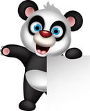Cute baby panda cartoon posing with blank sign Stock Image