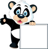 Cute Baby panda holding blank sign Royalty Free Stock Photos