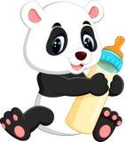 Cute baby panda Stock Photography