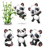 Cute baby pandas collection. Illustration of Cute baby pandas collection Stock Photography