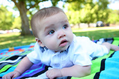 Cute Baby in the Park Stock Images