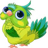 Cute Baby Parrot stock illustration