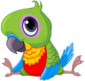 Cute Baby Parrot. Illustration of cute baby parrot Royalty Free Stock Image