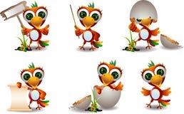 Cute baby parrots cartoon set Stock Images