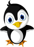 Cute baby penguin cartoon posing Stock Photo