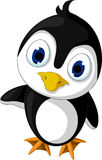 Cute baby penguin cartoon posing Royalty Free Stock Images