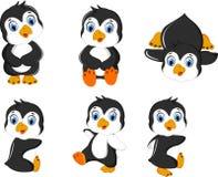 Cute baby penguin cartoon set character Stock Image
