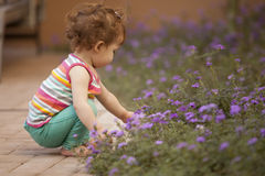 Cute baby picking flowers Royalty Free Stock Photo