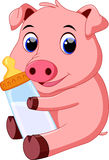 Cute baby pig cartoon. Cute cartoon baby pig with a bottle on a white background royalty free illustration