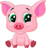 Cute baby pig cartoon Royalty Free Stock Photo