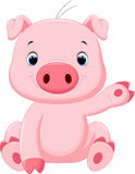 Cute baby pig cartoon Royalty Free Stock Image