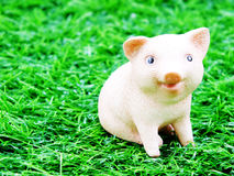 Cute baby piglet doll Royalty Free Stock Photos