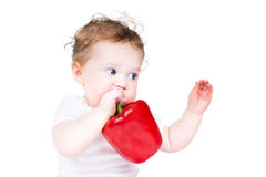 Cute baby playing with a big red paprika Stock Photography
