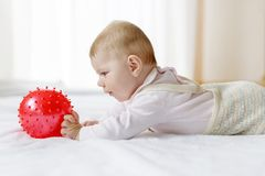 Cute baby playing with red gum ball, crawling, grabbing Royalty Free Stock Images