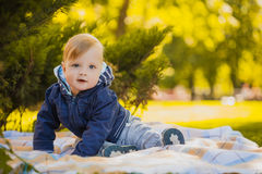 Cute baby are playing in the summer park Stock Photos