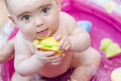 Cute baby playing with toy royalty free stock photo