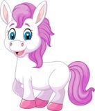Cute baby pony horse posing isolated on white background Stock Photo