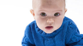 Cute baby portrait. Close up of a baby with brown green eyes Royalty Free Stock Photo