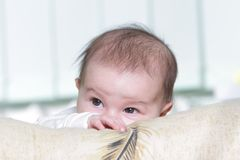 Cute baby portrait at home Stock Image