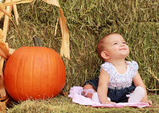 Cute Baby Portrait with Pumpkin Stock Image