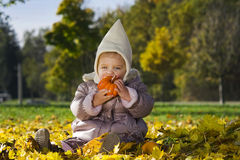 Cute baby with pumpkin Stock Photography