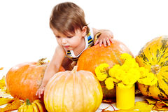 Cute baby among pumpkins Royalty Free Stock Photography