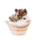 Cute baby rabbit wearing a hat  in a basket  Royalty Free Stock Photos