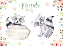 Cute baby raccon nursery animal isolated illustration for children. Bohemian watercolor boho forest drawing, watercolour Royalty Free Stock Photos