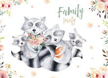 Cute baby raccon nursery animal isolated illustration for children. Bohemian watercolor boho forest raccons family Stock Photo