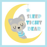 Cute baby raccoon sleeps on the moon  cartoon illustration for baby shower card design Stock Photos