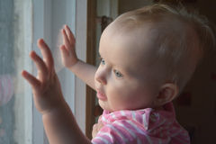 Cute baby  in  room stands near window Stock Image