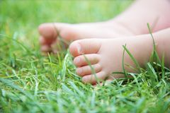 Cute baby`s feet on green grass Royalty Free Stock Photo