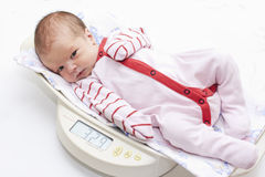 Cute baby on the scales. On a white background stock photos