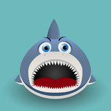 Cute baby shark Stock Photos