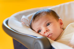 Cute baby in a stroller royalty free stock photography