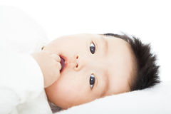 Cute baby sucks his thumb lying in bed Royalty Free Stock Image