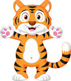 Cute baby tiger cartoon Stock Images