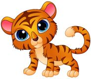 Cute baby tiger cartoon Royalty Free Stock Image