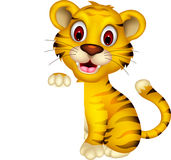 Cute baby tiger posing with blank sign Royalty Free Stock Photography