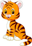 Cute baby tiger sitting  on white background Stock Photo