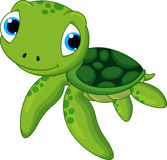 Cute baby turtle vector illustration