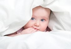 Cute baby under a blanket Stock Images