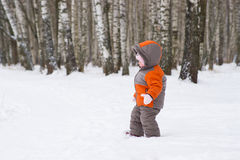 Cute Baby Walk From Winter Park Royalty Free Stock Image