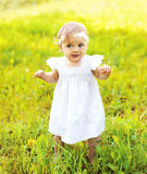 Cute baby walking on the grass in sunny summer Royalty Free Stock Image