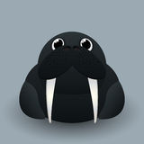 Cute baby walrus Stock Photo
