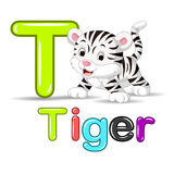 Cute baby white tiger vector illustration