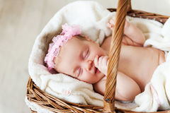 Cute baby in a wicked basket. Stock Image