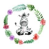 Cute baby zebra Animal for kindergarten, nursery, children clothing, pattern Royalty Free Stock Photos