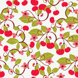 Cute background with Cherries. Vector seamless cute background with Cherries and blossom. pattern for fabrics, textiles, paper, wallpaper Stock Images